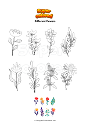 Coloring page Different flowers
