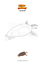 Coloring page Sea turtle